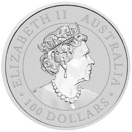 Platynowa Moneta Australijski Kangur 1 uncja 24h