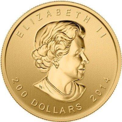 Zew Natury Wilk Złota Moneta 1 uncja 24h